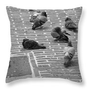 Pigeons Of Amsterdam Throw Pillow