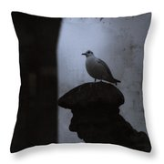 Pigeons Of Prague Throw Pillow by Sharon Coty