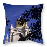 Pigeons Silhouetted Throw Pillow