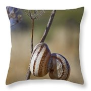 Piggy Back Throw Pillow