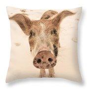 Piglet Throw Pillow