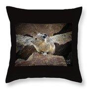 Pika - Weminuche Wilderness - Colorado Throw Pillow