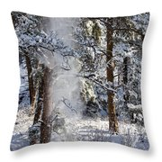 Pike National Forest Snowstorm Throw Pillow