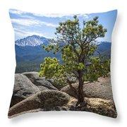Pikes Peak Bristlecone Throw Pillow