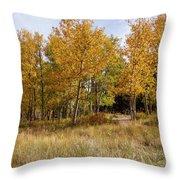 Pikes Peak Splendor Throw Pillow