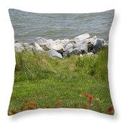 Pile Of Rocks On Shoreline Throw Pillow