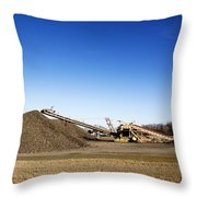 Pile Of Sugar Beets Throw Pillow