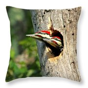 Pileated #29 Throw Pillow
