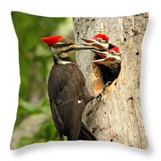 Pileated #30 Throw Pillow