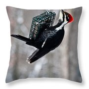 Pileated Billed Woodpecker Feeding 1 Throw Pillow