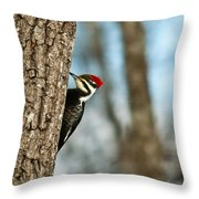 Pileated Billed Woodpecker Pecking 1 Throw Pillow