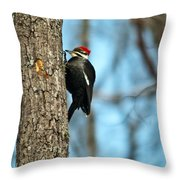 Pileated Billed Woodpecker Pecking 3 Throw Pillow