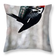 Pileated Billed Woodpecker Pecking 6 Throw Pillow