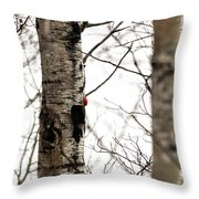 Pileated Throw Pillow