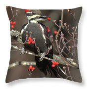 Pileated Woodpecker Lunch Throw Pillow