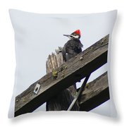 Pileated Woodpecker On A Power Pole Throw Pillow