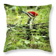 Pileated Woodpecker On The Ground No. 1 Throw Pillow