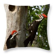 Pileated Woodpecker Ready To Fledge Throw Pillow