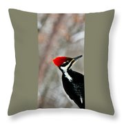 Pileated Woodpecker Up Close Throw Pillow