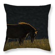 Pilot Butte Wild Horse Throw Pillow