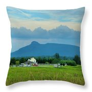 Pilot In The Clouds Throw Pillow