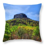 Pilot On A Spring Day Throw Pillow