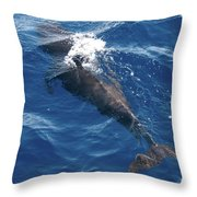 Pilot Whale 3 Throw Pillow