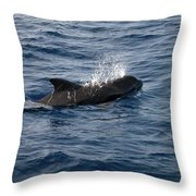 Pilot Whale 6 Throw Pillow