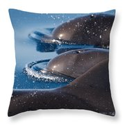 Pilot Whales 1 Throw Pillow