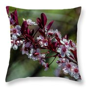 Pin Cherry Blossoms Throw Pillow