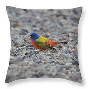 Pin Cushion On The Rocks Throw Pillow