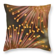 Pin Cushion Protea Throw Pillow