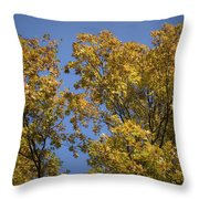 Pin Oaks In The Fall No 1 Throw Pillow