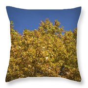 Pin Oaks In The Fall No 2 Throw Pillow