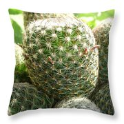 Pincushion Cactus Throw Pillow