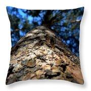 Pine Throw Pillow