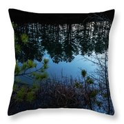 Pine Barren Reflections Throw Pillow
