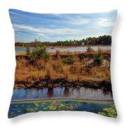 Pine Barrens Bog In New Jersey Throw Pillow