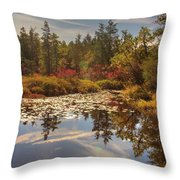 Pine Barrens New Jersey Whitesbog Nj Throw Pillow