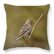 Pine Chirper Throw Pillow