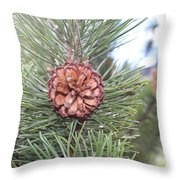 Pine Cone. Throw Pillow