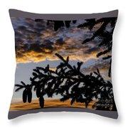 Pine Cone Sunset Throw Pillow