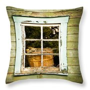 Pine Cones In The Window Throw Pillow