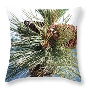 Pine Cones Over Lake Tahoe Throw Pillow