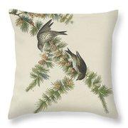 Pine Finch Throw Pillow
