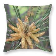 Pine Flower In Summer  Close Up Throw Pillow