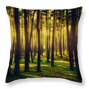 Pine Forest In La Boca Del Asno-segovia-spain Throw Pillow