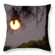 Pine Glow Throw Pillow