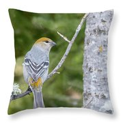 Pine Grosbeak Throw Pillow
