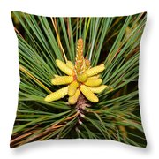 Pine In Bloom Throw Pillow